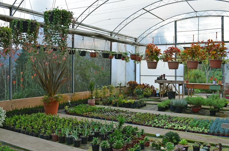 le-jardin-casa-baunilha7